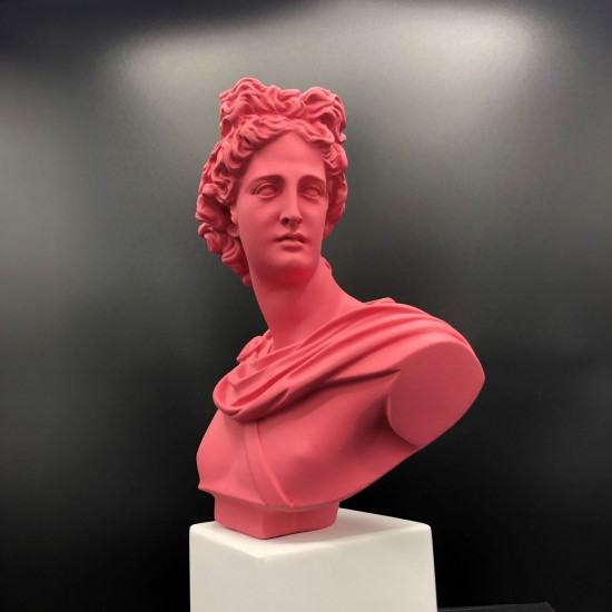 Apollo bust rosewood