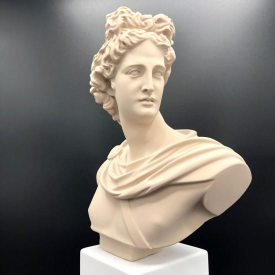 Apollo bust sable