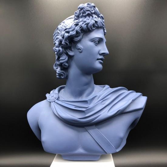 Apollo bust denim L