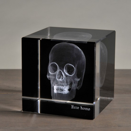 3-dimensional skull...